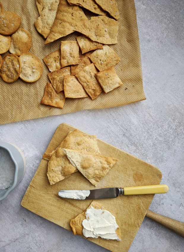 sourdough discard cracker recipe wish to dish 4